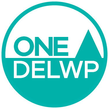 One DELWP icon