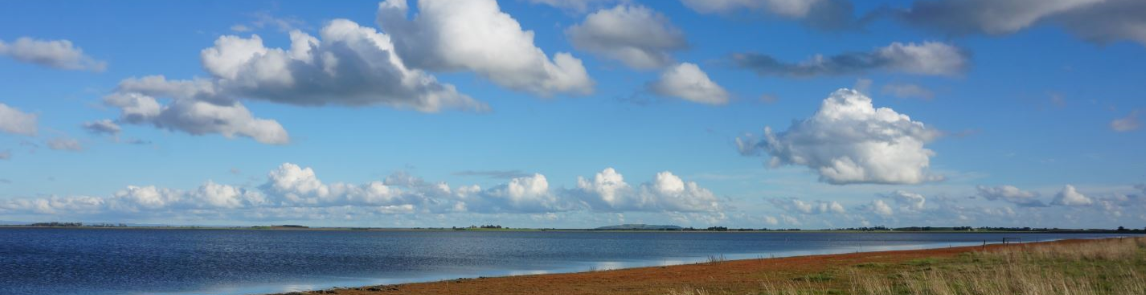 A view of a lake with blue sky and fluffy white clouds