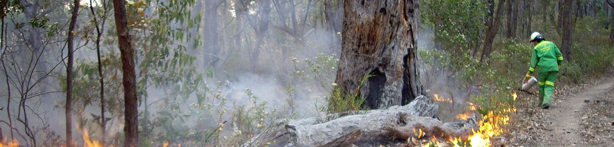 Protecting our communities and environment from bushfires