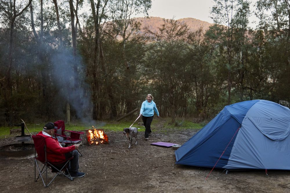 Camper walking her dog across camping site, Campfire, blue tent across from fire, another camper seated in chair observing