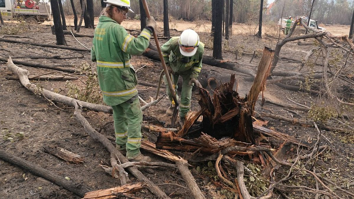 2 Forest Fire Management Victoria staff breaking up burnt fire branches